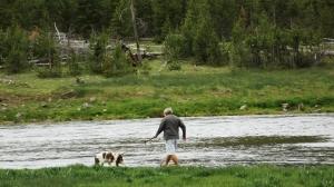 dog jax river