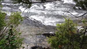 Closeup of Wood River