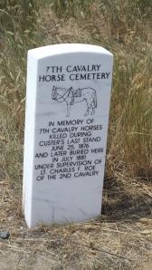 Horse Cemetery