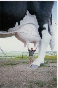 Real Perspective of the World's Largest Holstein, Mile 4728
