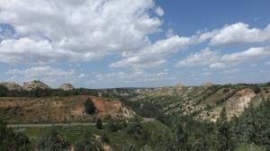 Another T R N P Landscape