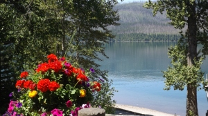 Lodge Flowers and Lake