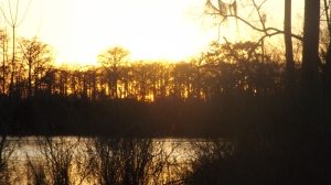 Sunset On the Tchefuncte