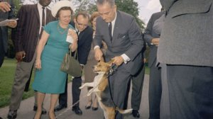 LBJ's Beagle 'Him' (Him's Sister Was 'Her')