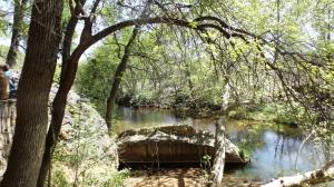 Beaver Creek (Where the Water Goes)