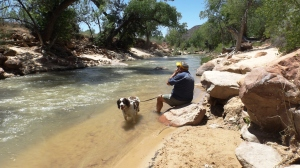 Cooling Off in Zion N.P.