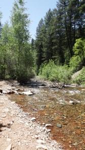 Junction Creek
