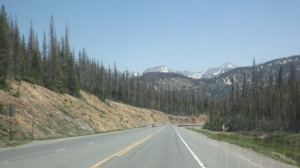 Snow Atop Wolf Creek Pass, in Late June