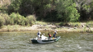 Fly Fishers in a Dory on the Arkansas