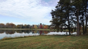 The Lake at Bernheim Forest