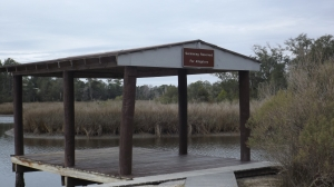 The Gator Pond