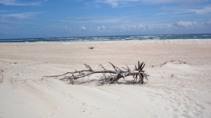 Ocracoke Island Beach, Atlantic Side