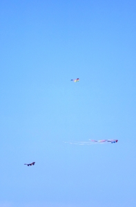 Three Kites on One String