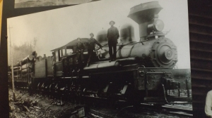 Shay No. 5 in Its Salad Days