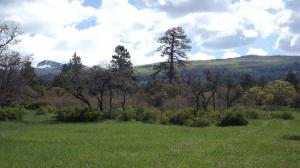 Madden Peak w Piney Frame